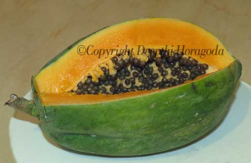 Organically grown Sri Lankan papaya fruit.