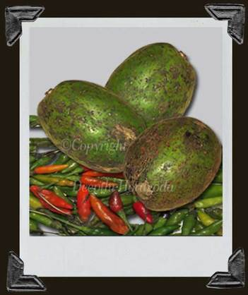Photograph of raw ambarella fruits and bird's eye chillies known as kochchi in Sri Lanka.